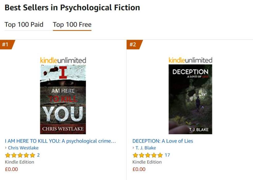 Number 2 on the Amazon Best Sellers in Psychological Fiction